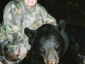 Thumb large bears 2006mod 1