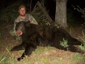 Thumb large mike s bear
